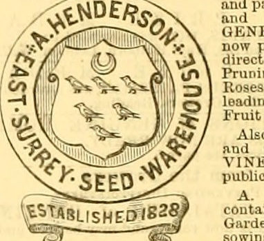 "Image from web page 7 of ""The Gardeners' chronicle and agricultural gazette"" (1844)"